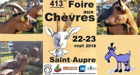 four a bois Saint Aupre